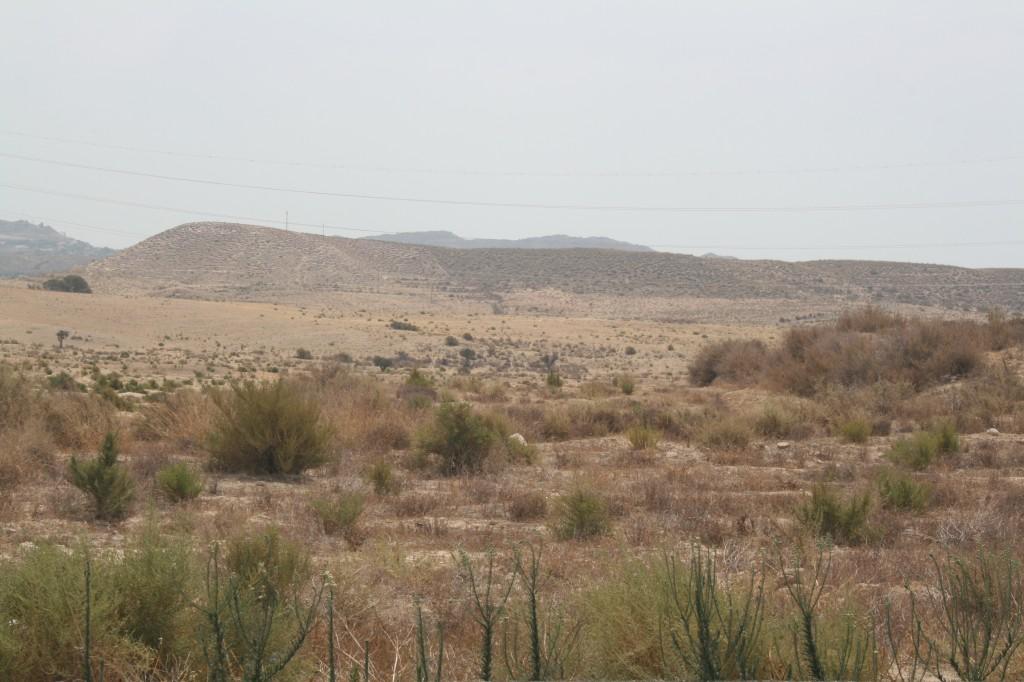 arid landscapes