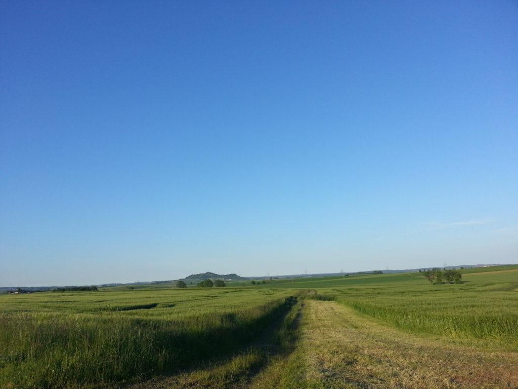 late afternoon outside hanau