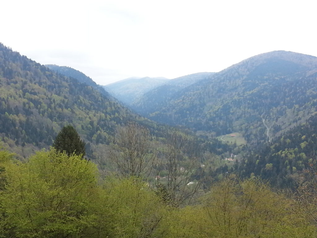 vogese mountain range valley