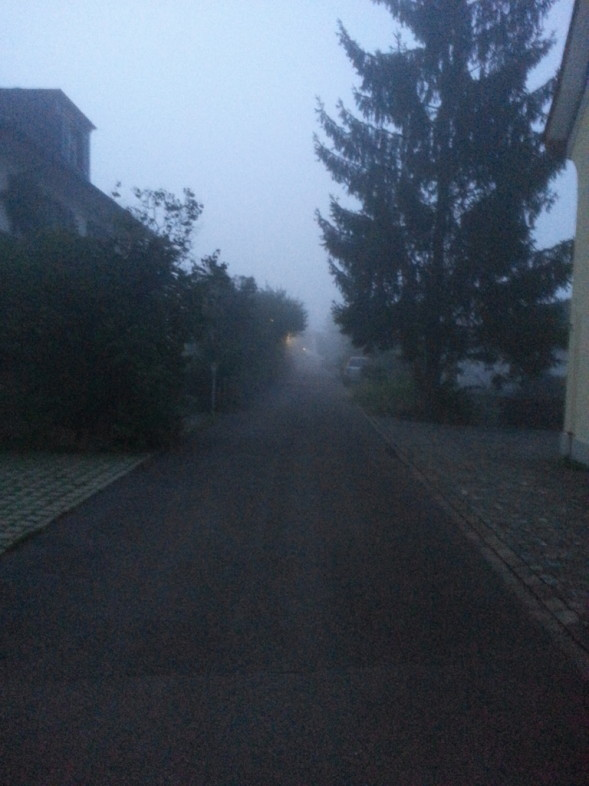our standard fare during the last few weeks... fog!