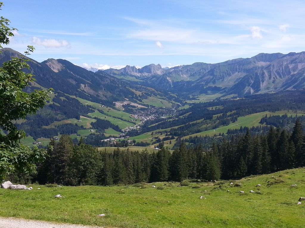 schönisei valley with brienzer rothorn in the background