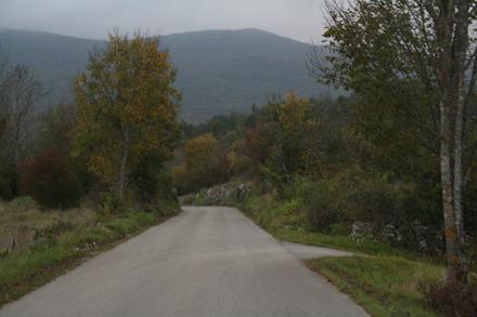 representative sample of views along this road