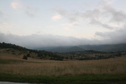 rural crotatia