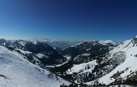 Appenzell Alps in the background
