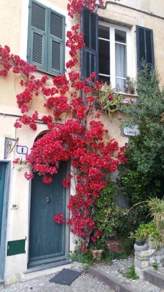 Cervo, house entrance