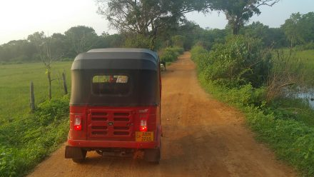 Our Sri Lankan three-wheeler