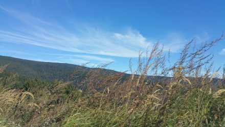 Our trip up to Rogla at 1500m