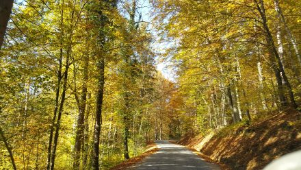 Beautiful colors in Styria