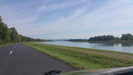 Driving along the Rhine