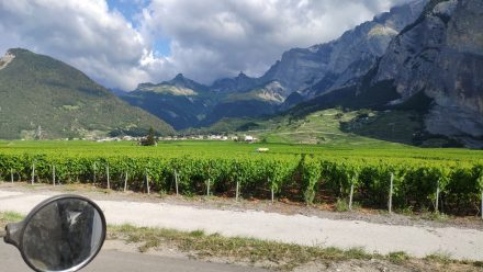 Postcard imagery of very drinkable Wallis wine