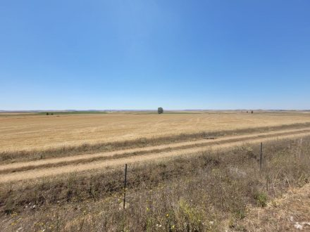 Wide expanses