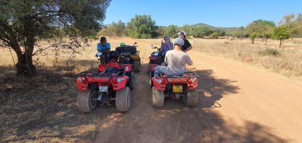 Taking a private guide with some ATV's and enjoy offroading