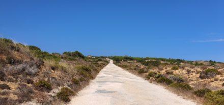 Single lane roads that lead to the coast