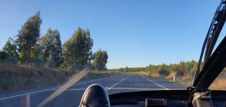 Last few km's before Castel Branco